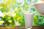 2016年欧盟生鲜乳产量及价格走势分析