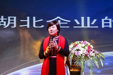 郑玉鸿:湖北企业国际战略与挑战