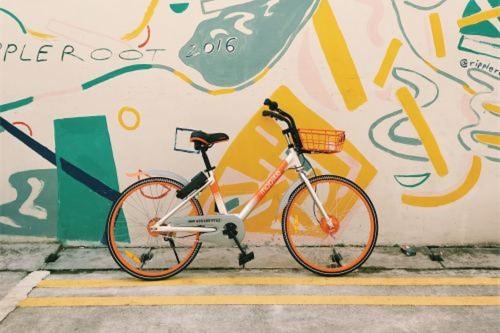 摩拜卖给美团后 谁将撑起共享单车的未来?