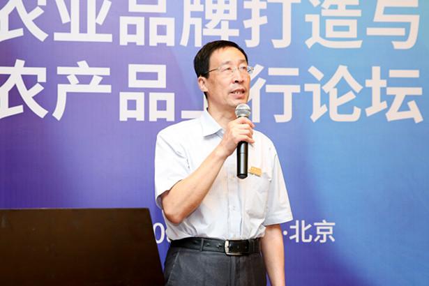 洪涛:电商助力贫困地区农产品上行