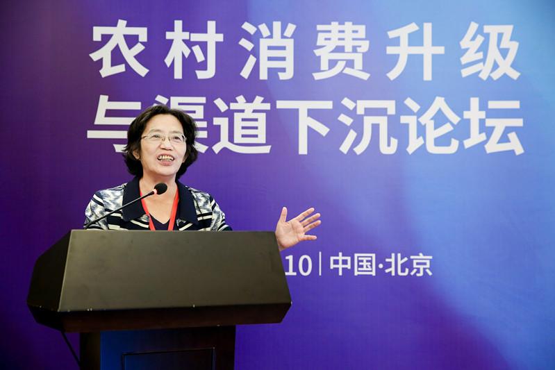 杨团:破解城乡二元结构 加速农村消费升级