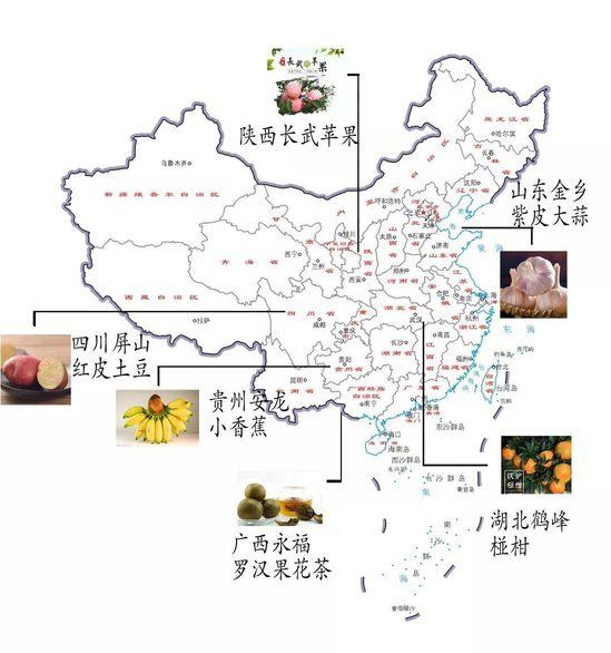疫情下 中国贫困乡村农产品求生路