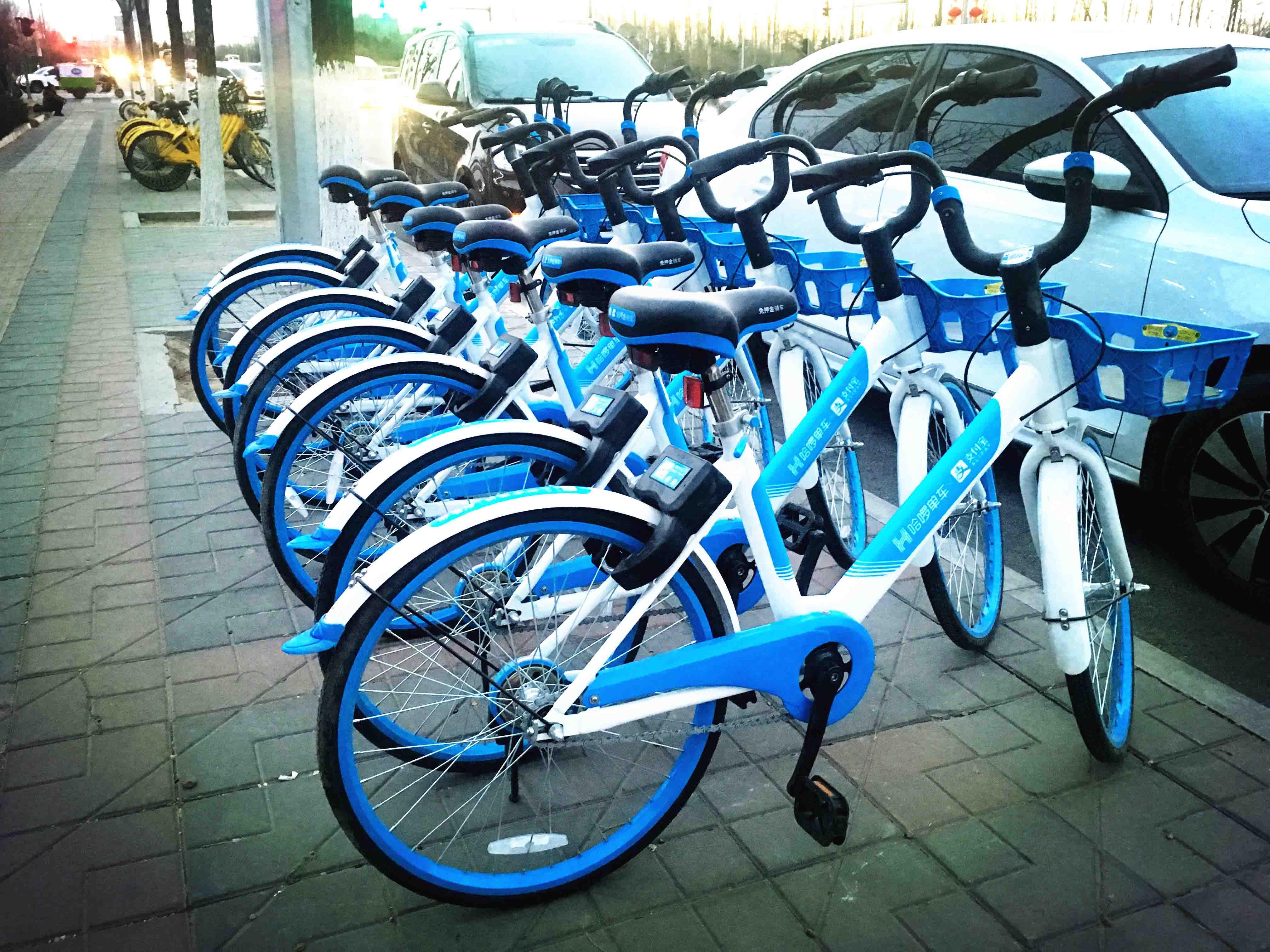 哈啰要上市了 共享單車第一股更需要的是錢