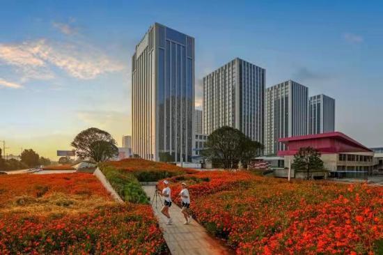 """望城——民营经济的""""旺城"""""""